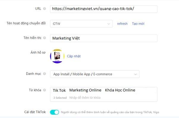 Điền thông tin quảng cáo Tik Tok Ads